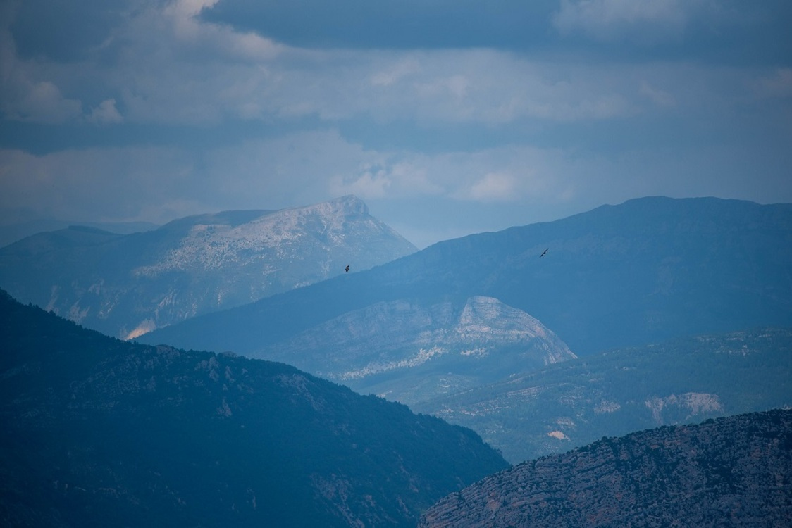 """Afin de """"ne pas déranger les oiseaux"""" (les vautours, mais aussi les espèces de rapaces protégées et rares..), certaines voies d'escalade sensibles des Gorges du Verdon ne sont pas ouvertes toute l'année... [Crédit photo : ©Alain Stoll on Visualhunt]"""