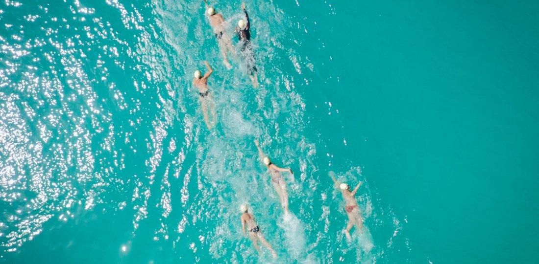 La course bat son plein entre nageurs !