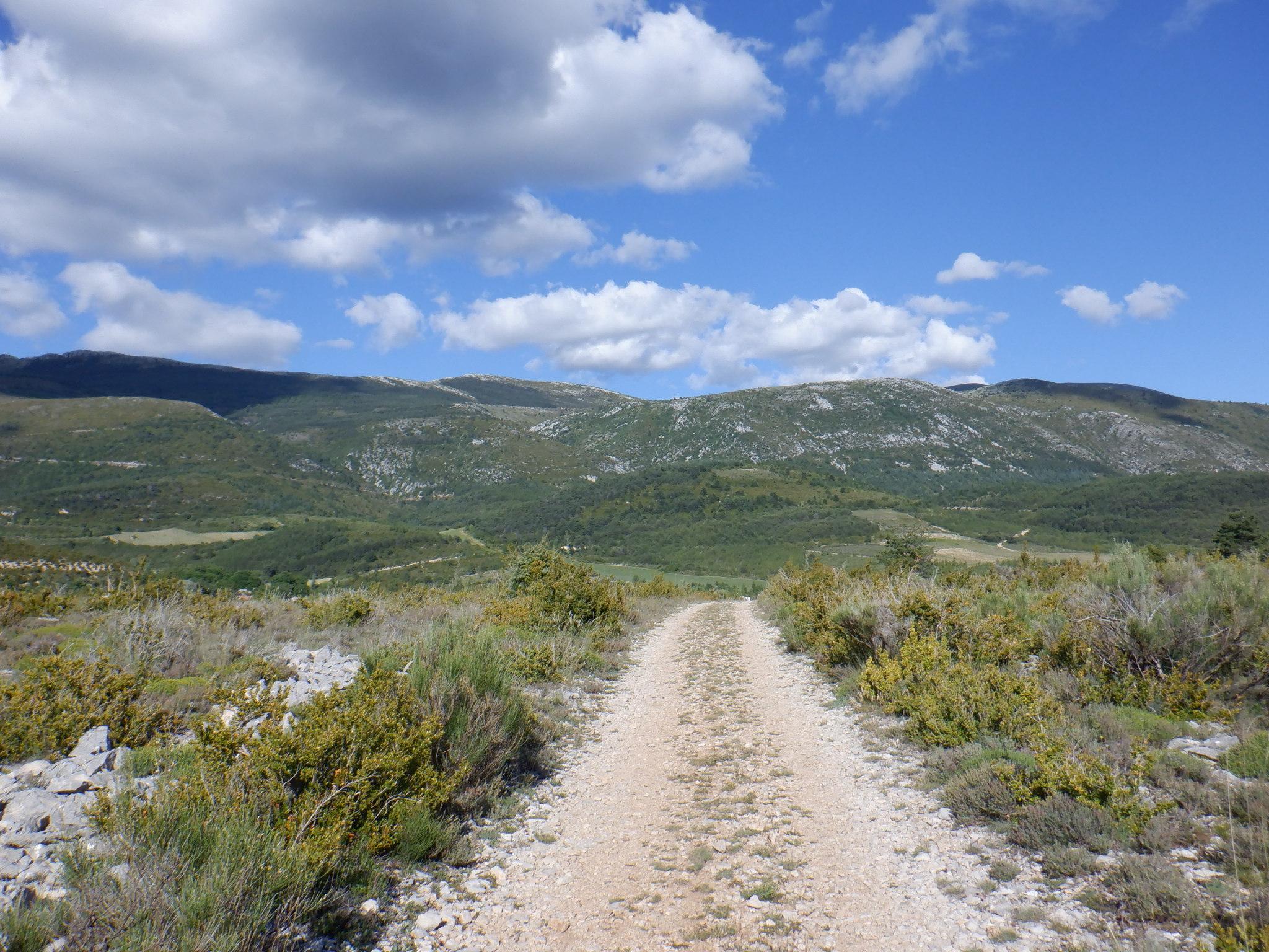 Le plateau de Vénascle, voie d'accès au massif du Montdenier.